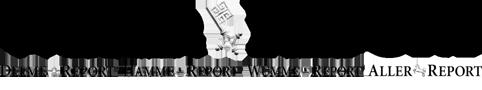 logo_weser-report
